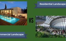 Residential vs Commercial Landscape Design