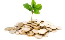 money_tree_business_finance_growth