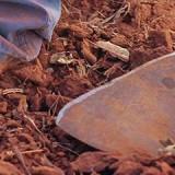 Tamil Nadu: HC orders no permits for stone crushing units