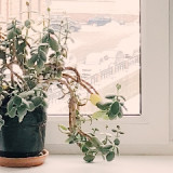 10 cool summer tips for your home